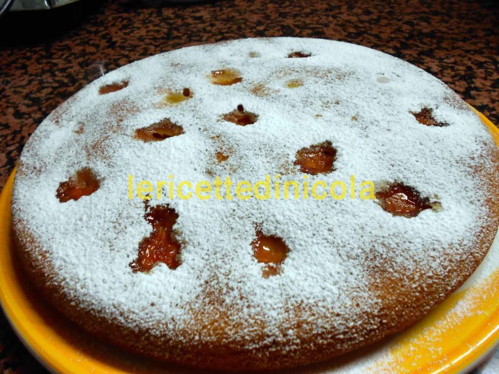 torta-albicocca-018
