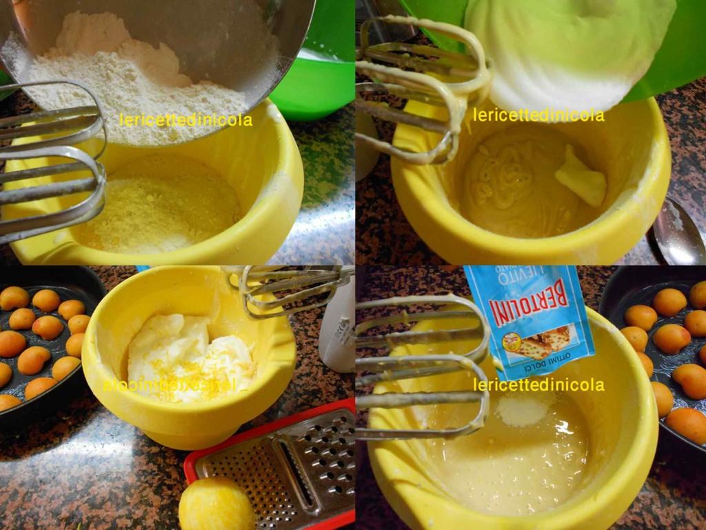 torta-albicocche-4